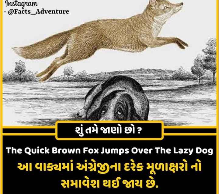 🔍 જાણવા જેવું - Instagram - @ Facts _ Adventure ' શું તમે જાણો છો ? જો The Quick Brown Fox Jumps Over The Lazy Dog આ વાક્યમાં અંગ્રેજીના દરેક મૂળાક્ષરોનો સમાવેશ થઈ જાય છે . - ShareChat
