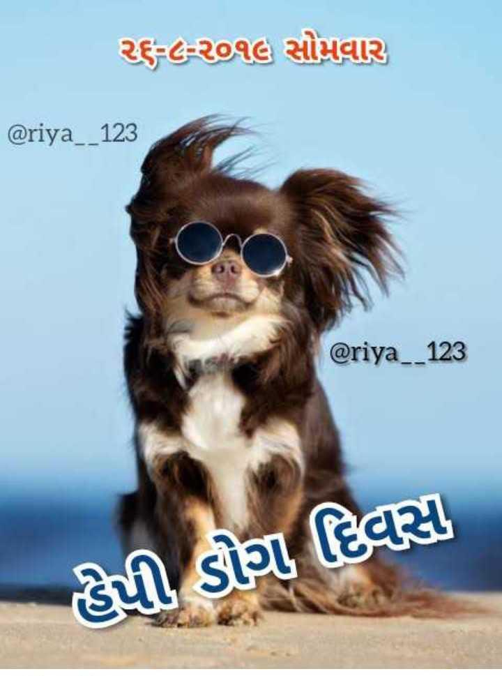 🐶 ડૉગ દિવસ - ર૬ - ૮ - ૨૦૧૭ સોમવાર @ riya _ _ 123 @ riya _ _ 123 હેપી ડોગા દિવસ - ShareChat