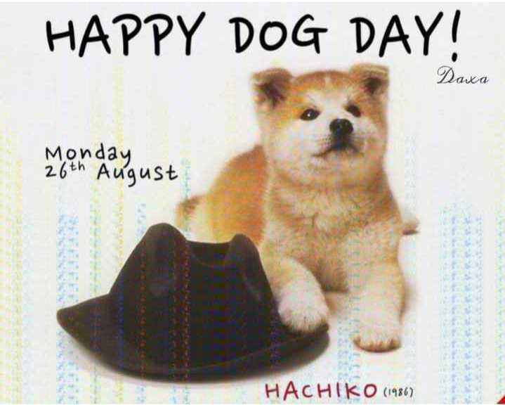 🐶 ડૉગ દિવસ - HAPPY DOG DAY ! Daxa Monday 26th August HACHIKO ( 1986 ) - ShareChat