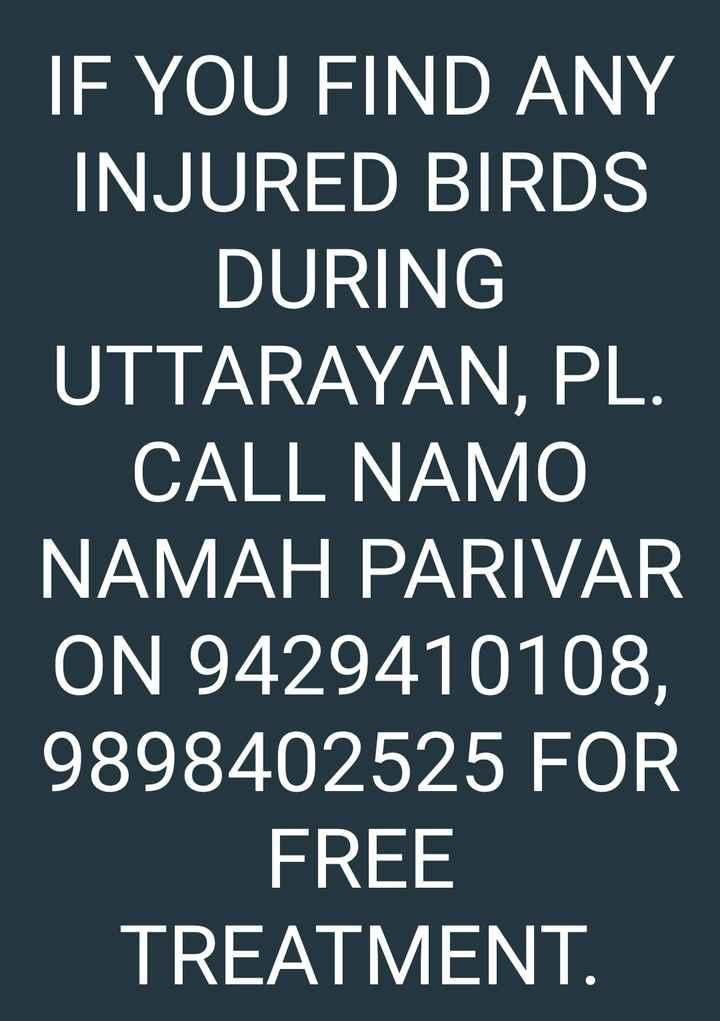 🎉 તહેવારો - IF YOU FIND ANY INJURED BIRDS _ DURING UTTARAYAN , PL . CALL NAMO NAMAH PARIVAR ON 9429410108 , 9898402525 FOR FREE TREATMENT . - ShareChat