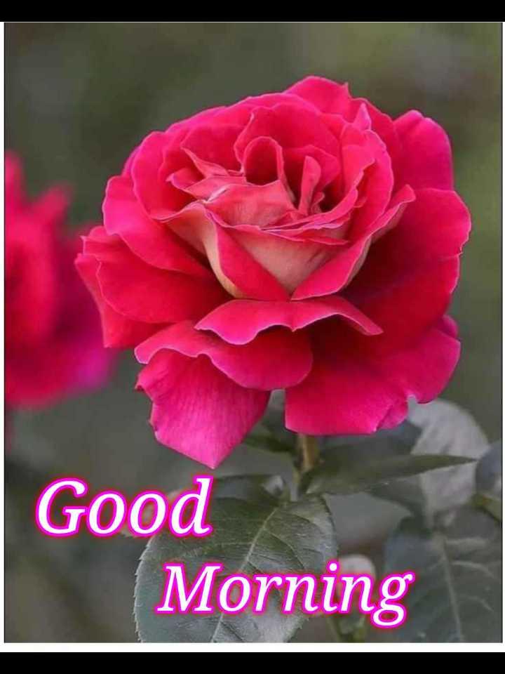 🎉 તહેવારો - Good Morning - ShareChat