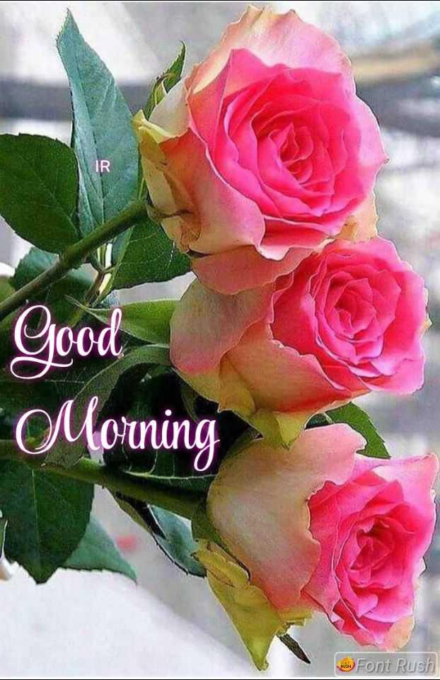 🎉 તહેવારો - Good Morning Font Rush - ShareChat