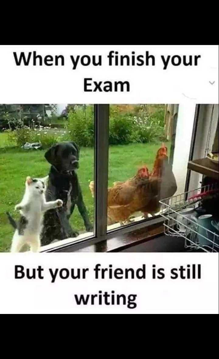 👯 દોસ્તી કોટ્સ - When you finish your Exam But your friend is still writing - ShareChat