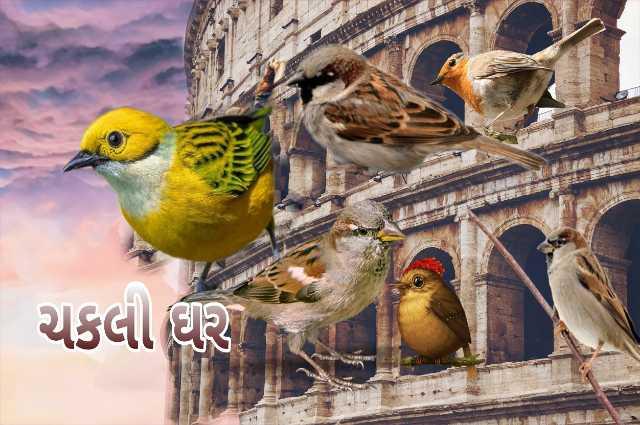 🏠 પક્ષી ઘર અભિયાન - ચકલી ઘી - ShareChat