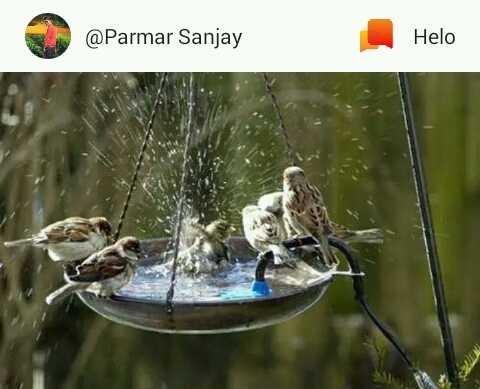 💧 પાણીના કુંડા અભિયાન - @ Parmar Sanjay - ShareChat