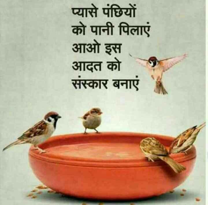 💧 પાણીના કુંડા અભિયાન - प्यासे पंछियों को पानी पिलाएं आओ इस आदत को संस्कार बनाएं - ShareChat