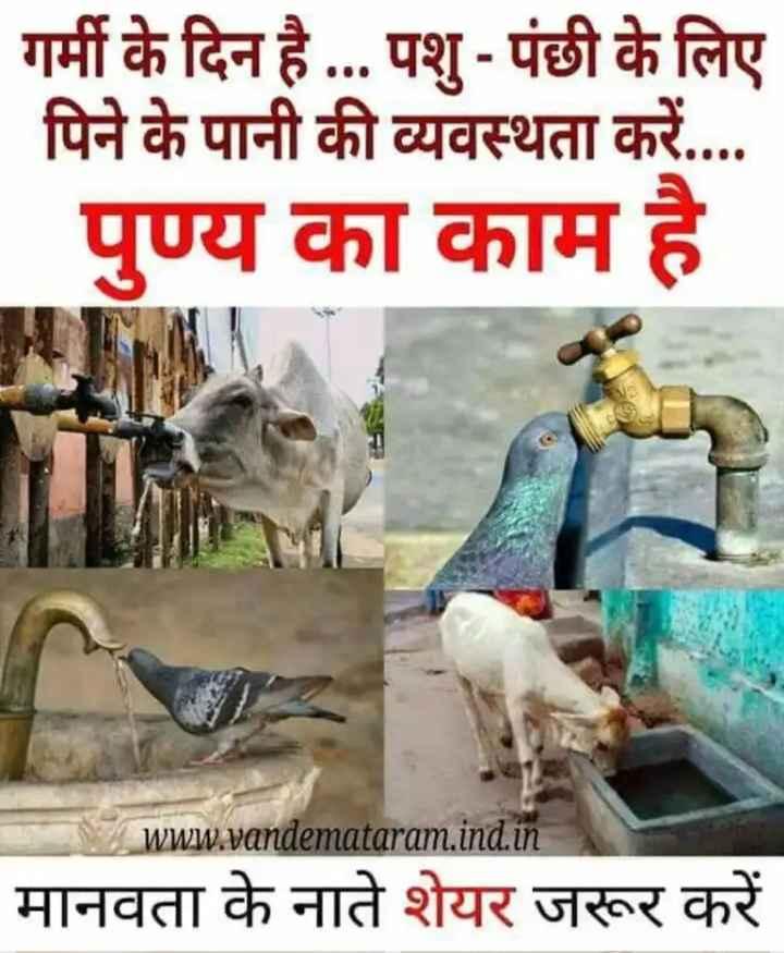 💧 પાણીના કુંડા અભિયાન - गर्मी के दिन है . . . पशु - पंछी के लिए पिने के पानी की व्यवस्थता करें . . . . पुण्य का काम है । www . vandemataram . ind . in मानवता के नाते शेयर जरूर करें - ShareChat