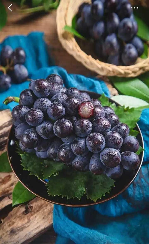 ફળ - ShareChat