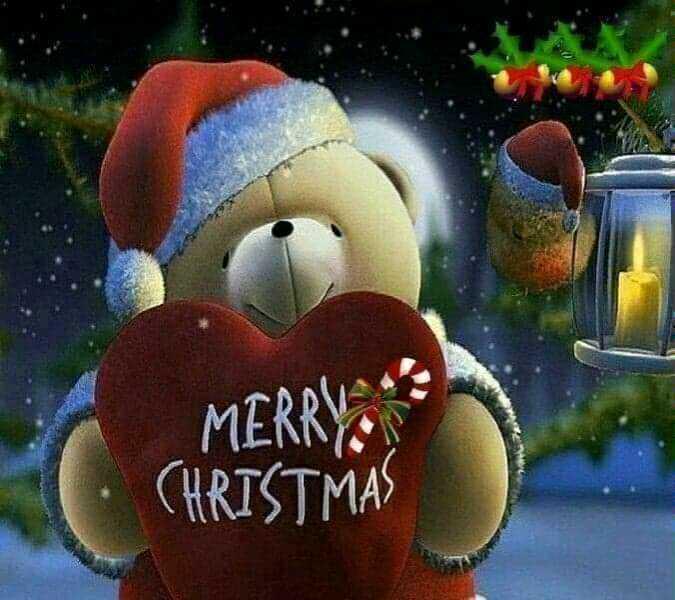 🎄 મેરી ક્રિસ્મસ 🎅 - MERRY CHRISTMAS - ShareChat