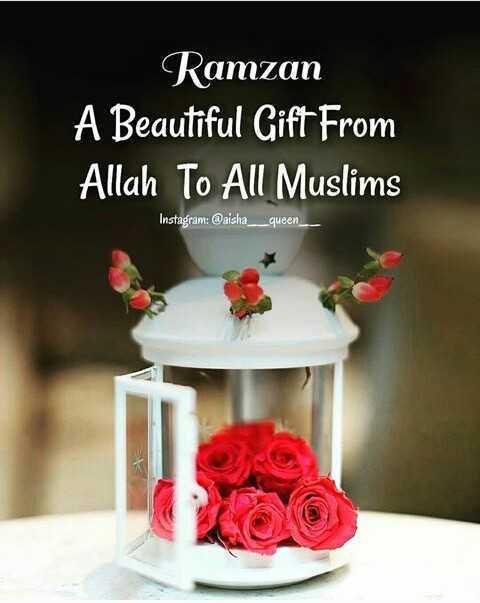 🎴 રમઝાન વોલપેપર - Ramzan A Beautiful Gift From Allah To All Muslims Instagram : @ aisha _ _ _ queen - ShareChat
