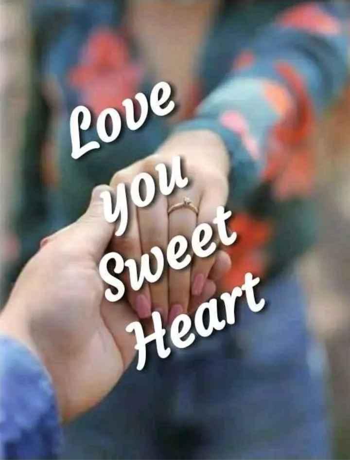 💝 લવ કોટ્સ - Love you Sweet Heart - ShareChat