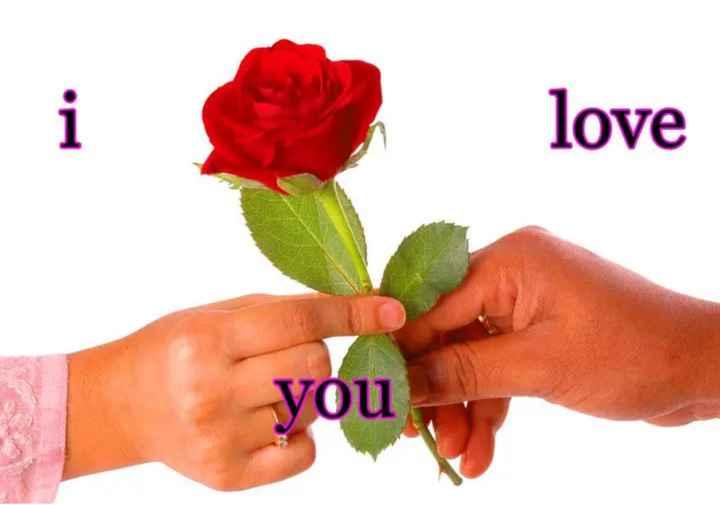 💝 લવ કોટ્સ - love you - ShareChat