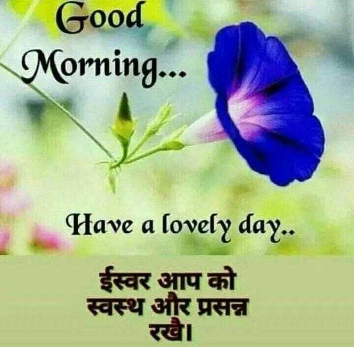 લવ ફોટો - Good Morning . . . Have a lovely day . . ईस्वर आप को स्वस्थ और प्रसन्न रखा - ShareChat