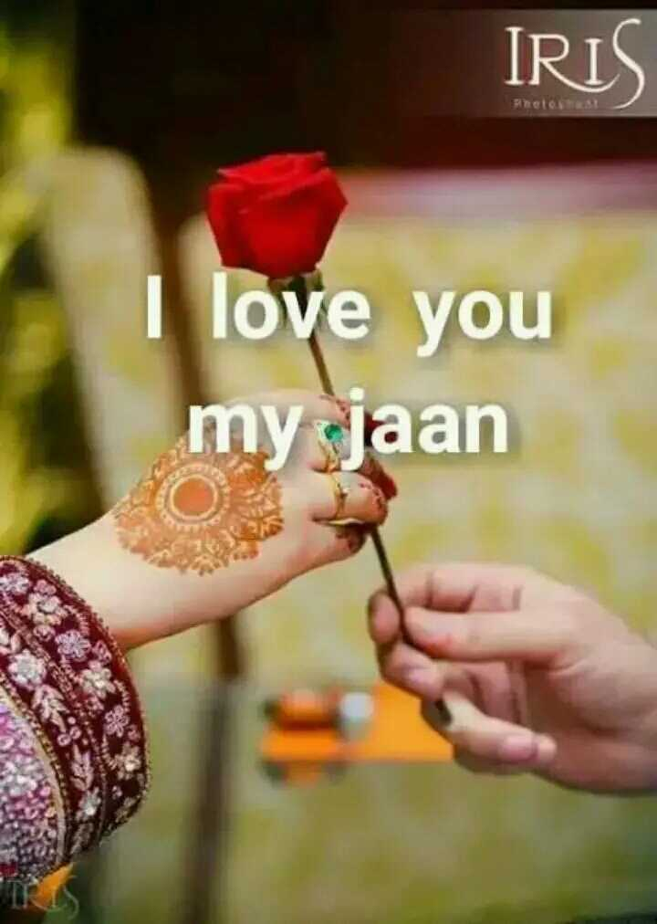 💓 લવ સ્ટેટ્સ - IRIS BE31 love you my jaan - ShareChat