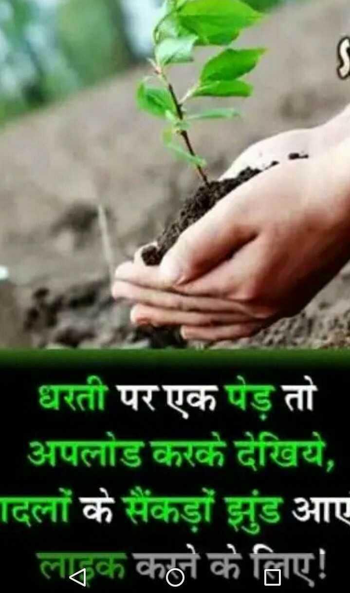 🌳 વન મહોત્સવ 🌳 - धरती पर एक पेड़ तो अपलोड करके देखिये , दिलों के सैंकड़ों झुंड आए लक्लक कहने के लिए ! - ShareChat