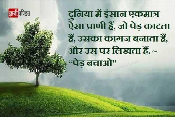 """🌳 વન મહોત્સવ 🌳 - ज्ञानी पण्डित दुनिया में इंसान एकमात्र ऐसा प्राणी हैं , जो पेड़ काटता हैं , उसका कागज बनाता हैं , और उस पर लिखता हैं . ~ """" पेड़ बचाओ """" - ShareChat"""