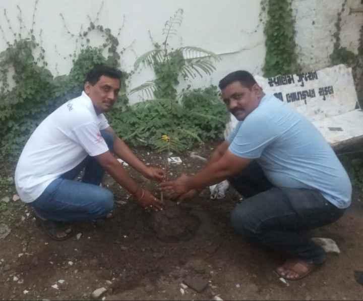 🌳 વન મહોત્સવ 🌳 - jasle mula DE 2 - ShareChat