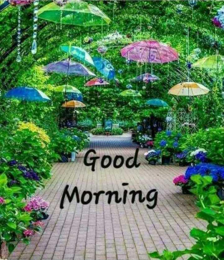 ☔ વરસાદનું આગમન - Si Good Morning - ShareChat
