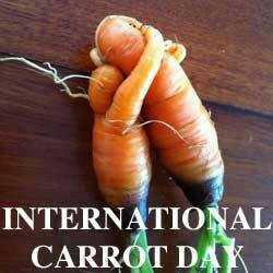 🥕 વિશ્વ ગાજર દિવસ - INTERNATIONAL CARROT DAK - ShareChat