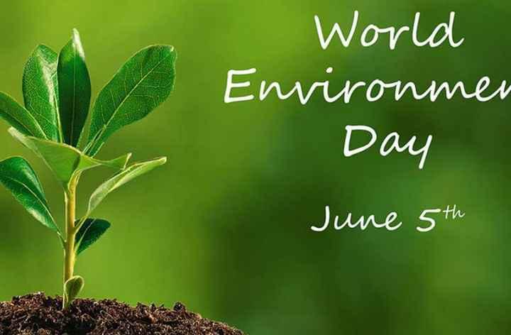 🌍 વિશ્વ પર્યાવરણ દિવસ - World Environmen Day June 5th - ShareChat