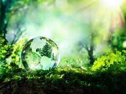 🌍 વિશ્વ પર્યાવરણ દિવસ - ShareChat