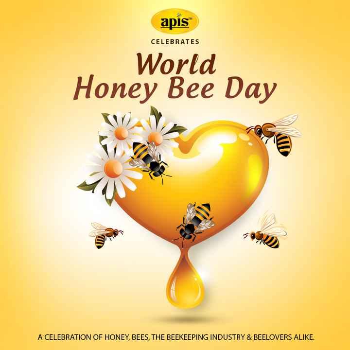 """🐝 વિશ્વ મધમાખી દિવસ - apis """" CELEBRATES World Honey Bee Day A CELEBRATION OF HONEY , BEES , THE BEEKEEPING INDUSTRY & BEELOVERS ALIKE . - ShareChat"""