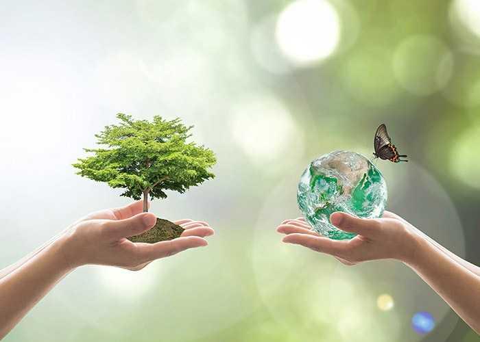 🦁 વિશ્વ વન દિવસ - ShareChat