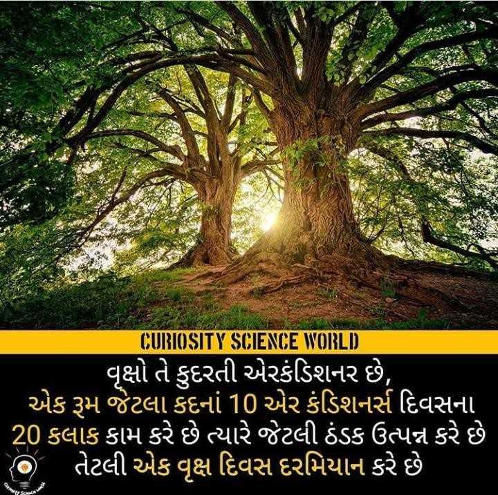 🦁 વિશ્વ વન દિવસ - CURIOSITY SCIENCE WORLD ' વૃક્ષો તે કુદરતી એરકંડિશનર છે , ' એક રૂમ જેટલા કદનાં 10 એર કંડિશનર્સ દિવસના ' 20 કલાક કામ કરે છે ત્યારે જેટલી ઠંડક ઉત્પન્ન કરે છે ' છે તેટલી એક વૃક્ષ દિવસ દરમિયાન કરે છે - ShareChat