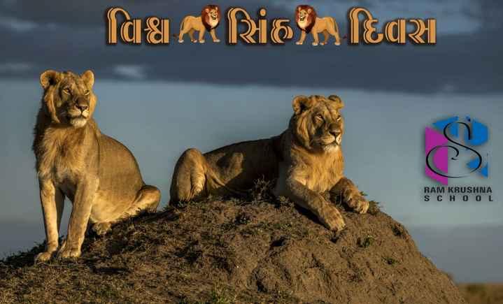 🦁 વિશ્વ સિંહ દિવસ - વિઠા : સિંહ , દિવારી RAM KRUSHNA SCHOOL - ShareChat