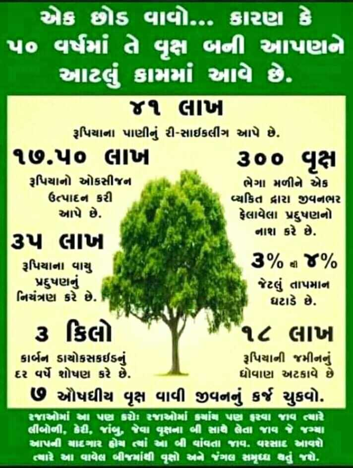 🌳 વૃક્ષો વાવો અભિયાન - એક છોડ વાવો . . . કારણ કે ' પ૦ વર્ષમાં તે વૃક્ષ બની આપણને ' આટલી ગામમાં આવે છે . ૪૧ લાખ રૂપિયાના પાણીનું રી - સાઈકલીંગ આપે છે . ૧૭ . ૫૦ લાખ ૩૦૦ વૃક્ષ રૂપિયાનો ઓકસીજન ભેગા મળીને એક ઉત્પાદન કરી વ્યકિત દ્વારા જીવનભર આપે છે . ફેલાવેલા પ્રદુષણનો ૩૫ લાખ નાશ કરે છે . રૂપિયાના વાયુ ૩ % થી ૪ % - પ્રદુષણનું જેટલું તાપમાન નિયંત્રણ કરે છે . | ઘટાડે છે . ૩ કિલો ૧૮ લાખ કાર્બન ડાયોકસાઇડનું રૂપિયાની જમીનનું દર વર્ષે શોષણ કરે છે . ધોવાણ અટકાવે છે ૭ ઔષધીય વૃક્ષ વાવી જીવનનું કર્જ ચુકવો . રજાઓમાં મા પણ કરોn રજાઓમાં કયાંય પણ હરવા જાવ ત્યારે લીબોની , દેd , viણ , જેવા વૃક્ષના બી સાથે લેતા જાવ જે વ્યા અપની વાર હોય તો આ બી વાવતા જાવ . વરસાદ મારો ત્યારે આ વાવેલ બીereiાંથી વૃક્ષો અને ગલ સમૃધ્ધ થતું જશે . - ShareChat