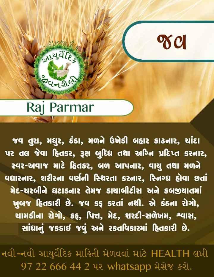 🚴 શારીરિક કસરત - જણ ALયુર્વેહિ . જીવને Raj Parmar ' જવ તુરા , મઘુર , ઠંડા , મળને ઉખેડી બહાર કાઢનાર , ચાંદા ' પર તલ જેવા હિતકર , રૂક્ષ બુધ્ધિ તથા અગ્નિ પ્રદિપ્ત કરનાર , સ્વર - અવાજ માટે હિતકર , બળ આપનાર , વાયુ તથા મળને વિધારનાર , શરીરના વર્ણની સ્થિરતા કરનાર , સ્નિગ્ધ હોવા છતાં મેદ - ચરબીને ઘટાડનાર તેમજ ડાયાબીટીસ અને કબજીયાતમાં ખુબજ હિતકારી છે . જવ કફ કરતાં નથી . એ કંઠના રોગો , ચામડીના રોગો , કફ , પિત્ત , મેદ , શરદી - સળેખમ , શ્વાસ , ' સાંધા જકડાઇ જવું અને રકતવિકારમાં હિતકારી છે . નવી - નવી આયુર્વેદિક માહિતી મેળવવા માટે HEALTH લખી . ' 97 22 666 44 2 પર whatsapp મેસેજ કરો . - ShareChat