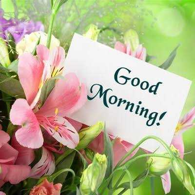 😊 શુભકામનાઓ - Good Morning ! - ShareChat