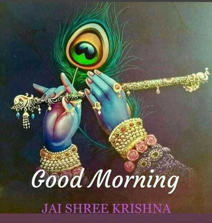 😊 શુભકામનાઓ - lor Good Morning JAI SHREE KRISHNA - ShareChat