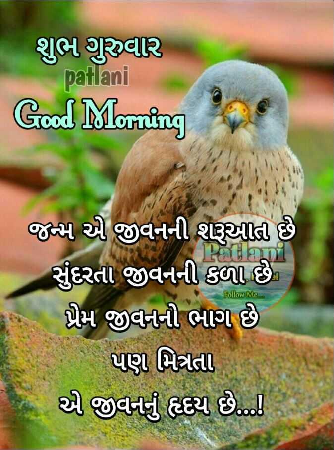 💐 શુભ ગુરૂવાર - શુભ ગુરુવાર patlani Good Morning Follow Me . . . જન્મ એ જીવનની શરૂઆતી છે સુંદરતા જીવનની કળા છે ) પ્રેમ જીવનની ભાગ છે પણ મિત્રતા આ જીવનનું ક્ય છે . ... - ShareChat