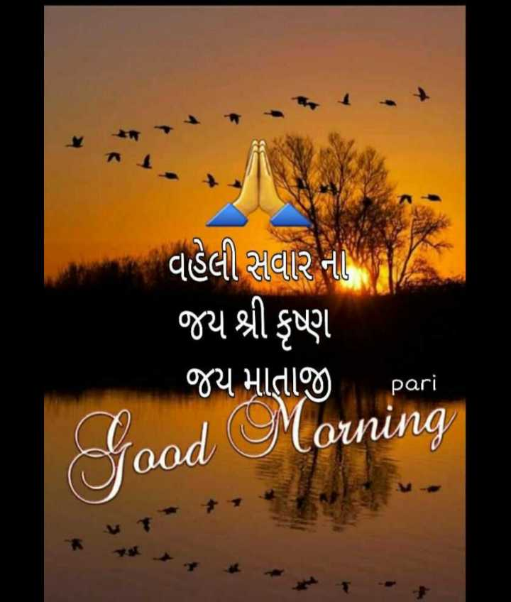 💐 શુભ બુધવાર - વહેલી સવાર નો જય શ્રી કૃષ્ણ જય માતાજી pari Good Morning - ShareChat