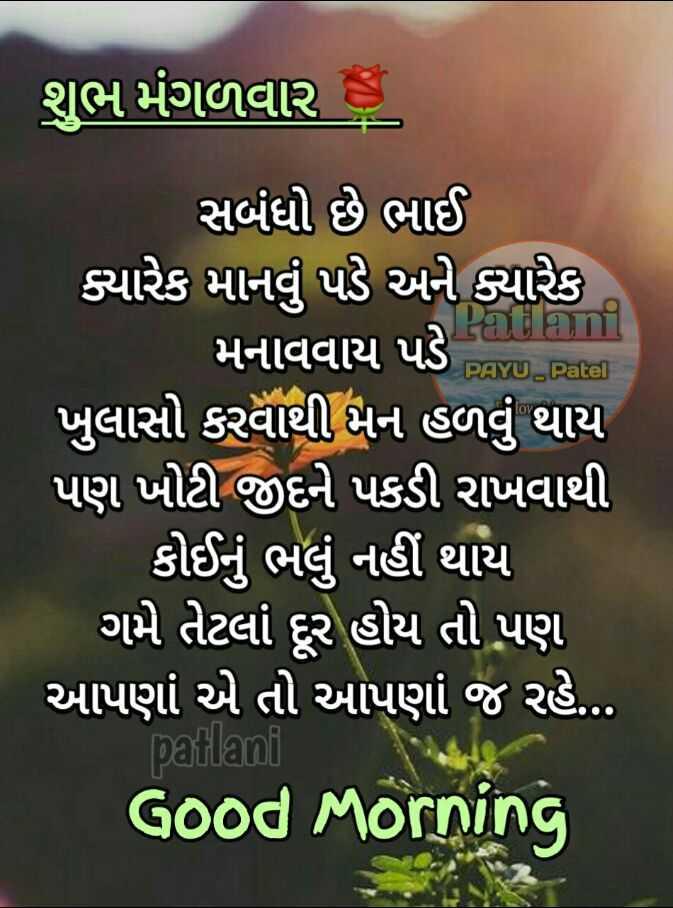 💐 શુભ મંગળવાર - ' શુભ મંગળવાર 8 PAYU . Patel ' સબંધો છે ભાઈ ક્યારેક માનવું પડે અને ક્યારેક મનાવવાય પડે ! ' ખુલાસો કરવાથી મન હળવું થાય પણ ખોટી જીદને પકડી રાખવાથી | કોઈનું ભલું નહીં થાય ' ગમે તેટલાં દૂર હોય તો પણ ' આપણાં એ તો આપણાં જ રહે . . . patlani Good Morning - ShareChat