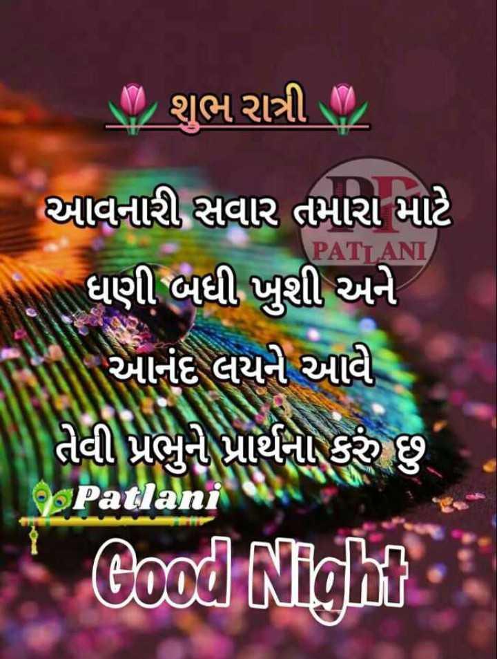 🌙 શુભ રાત્રી - ગ , શુભ રાત્રી / - આવનારી , સવાર તમારા માટે ધણી બધી ખુશી અને આનંદ લયને આવી PATI ANI Cood Night - ShareChat