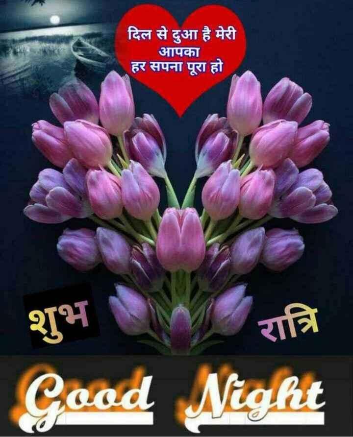 🌙 શુભરાત્રી - दिल से दुआ है मेरी आपका हर सपना पूरा हो । शुभ रात्रि Cood Night - ShareChat
