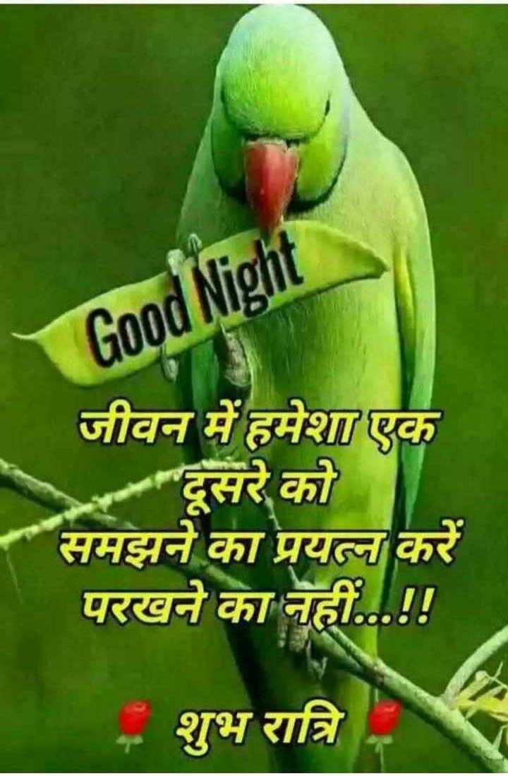 🌙 શુભરાત્રી - Good Night जीवन में हमेशा एक दूसरे को समझने का प्रयत्न करें परखने का नहीं . . . ! ! शुभ रात्रि - ShareChat