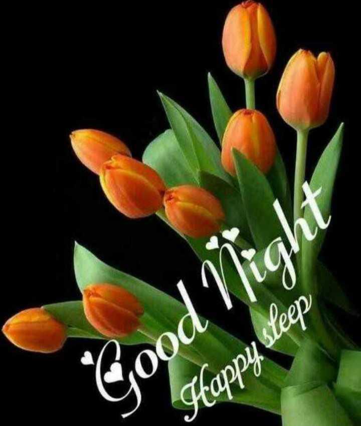 🌙 શુભરાત્રી - Good Night Happy sleep - ShareChat