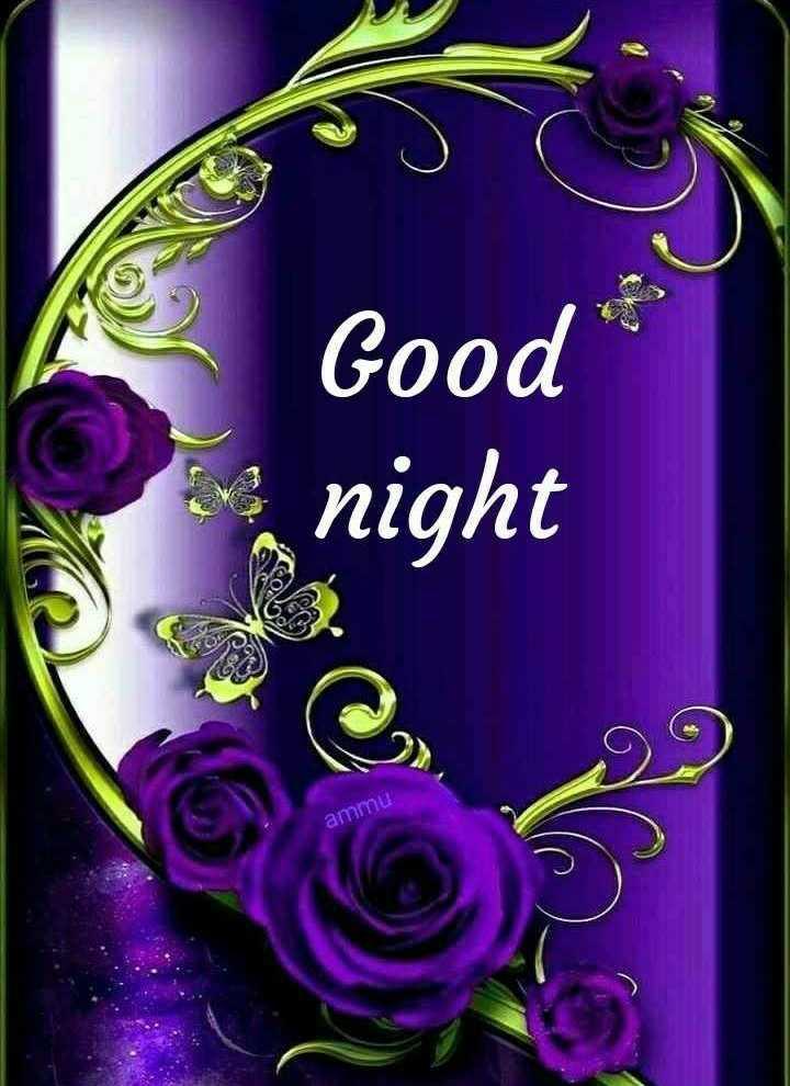 🌙 શુભરાત્રી - Good night ammu - ShareChat