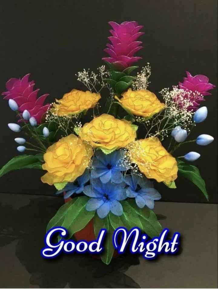 🌙 શુભ રાત્રી - Good Night - ShareChat