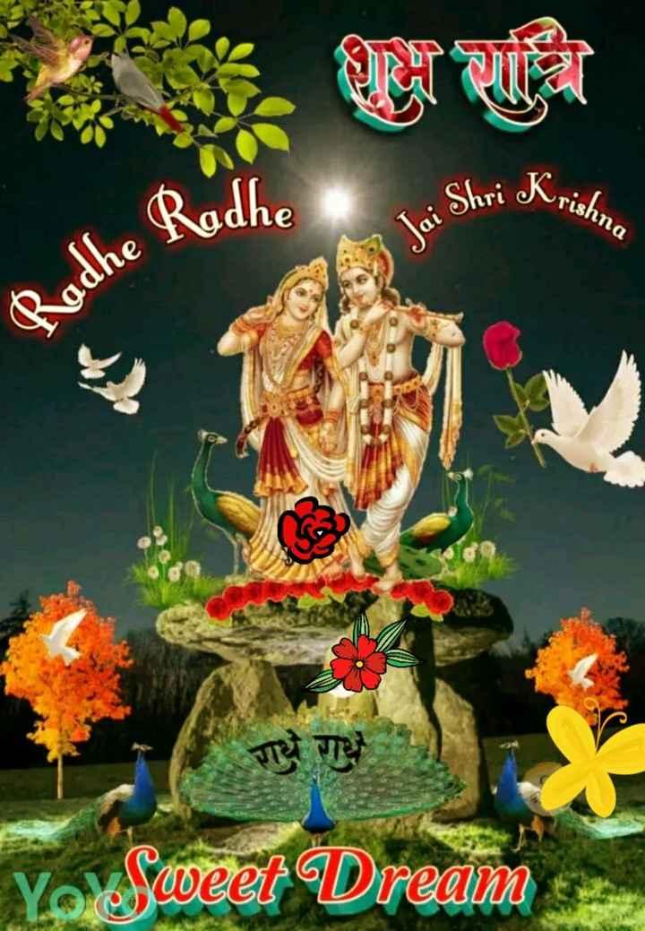 🌙 શુભ રાત્રી - • Shri Krish rishna The Roche 2 Jai Shr Radhe R राधे गधे et Dream - ShareChat