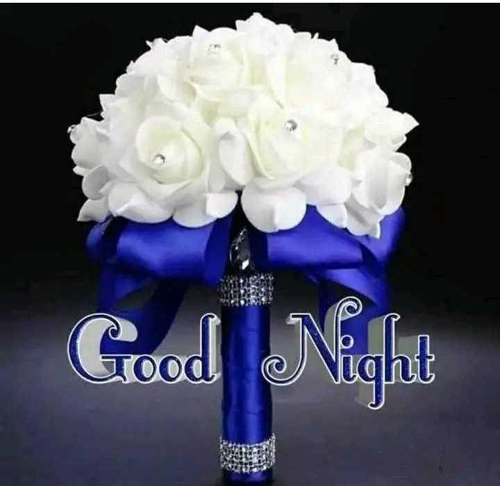 🌙 શુભરાત્રી - Good Good Night LIL - ShareChat