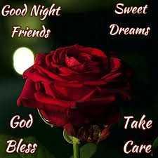 🌙 શુભરાત્રી - Good Night Friends Sweet Dreams God Bless Take Care - ShareChat