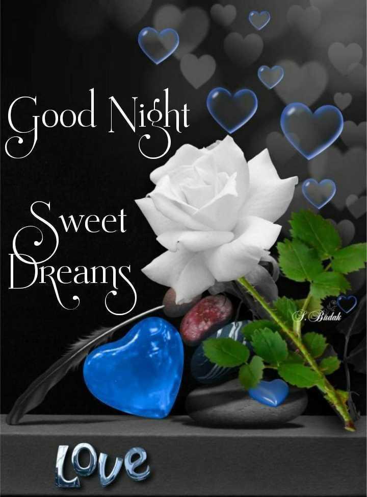 🌙 શુભરાત્રી - Good Night 200 Sweet Dreams Bindak love - ShareChat