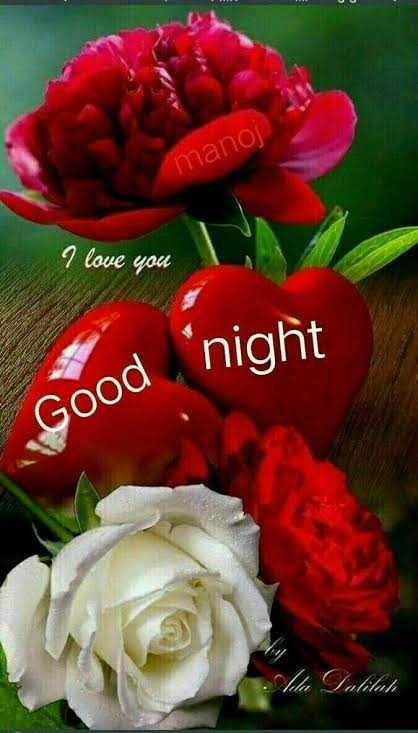🌙 શુભ રાત્રી - manoj I love you Good night alilah - ShareChat