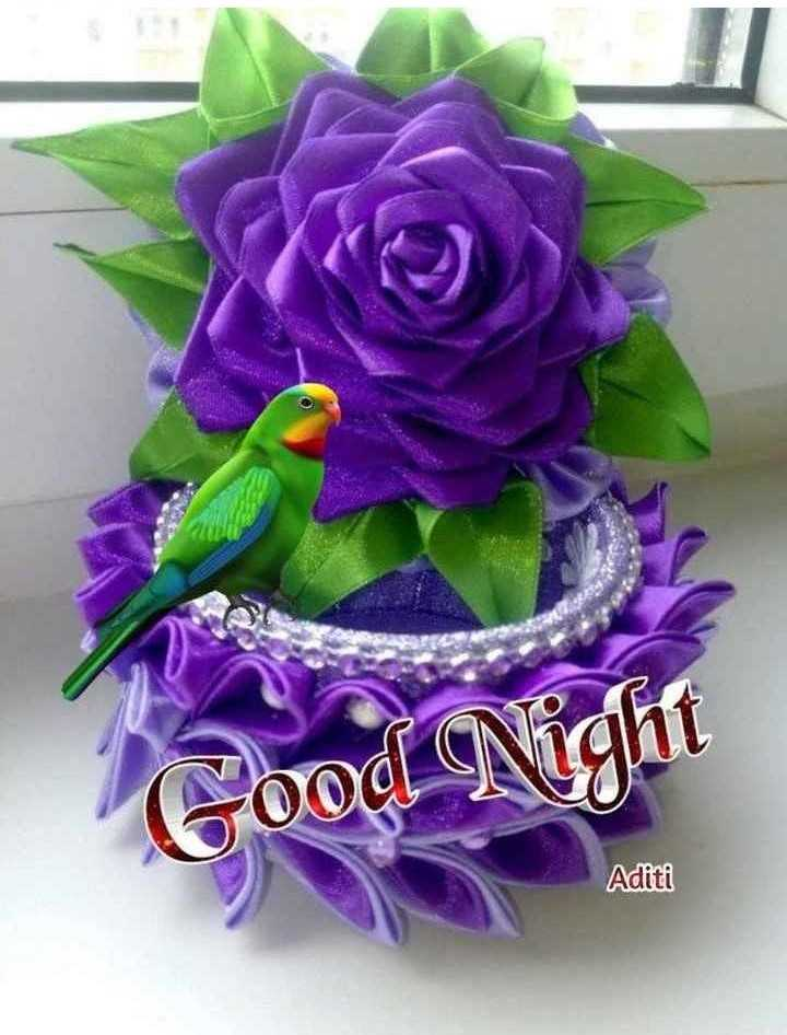 🌙 શુભરાત્રી - ood Night Aditi - ShareChat