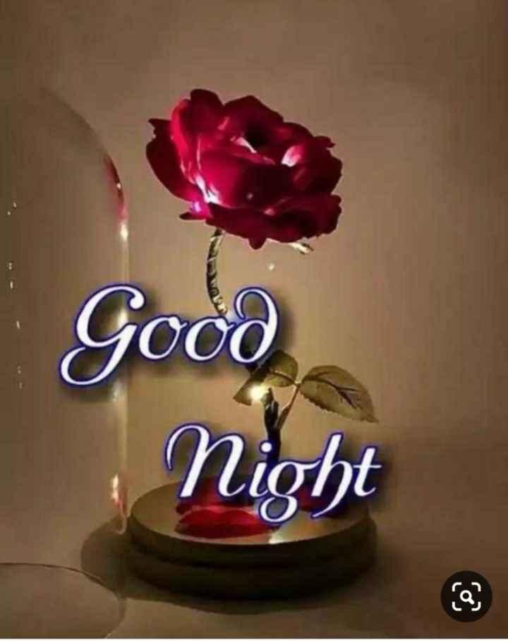 🌙 શુભરાત્રી - Good Night - ShareChat