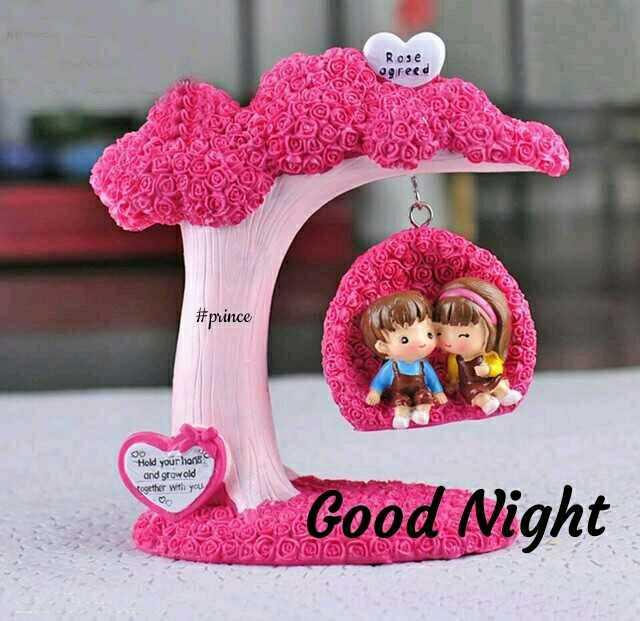 🌙 શુભરાત્રી - Rose 590 reed @ VOR Der ADID POL SOS # prince Os Oo Hold your hans and growold together with you O Good Night es DOGOV - ShareChat